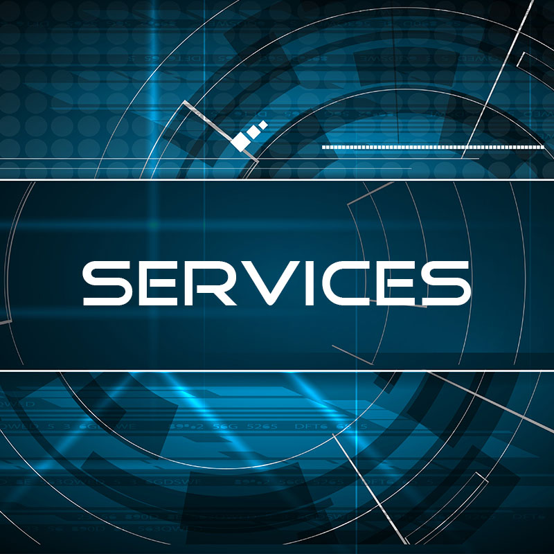 services consulting security management risk advisory lazare